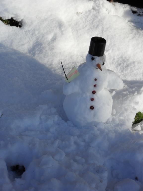 Little Mr Snowman