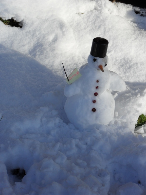 Little Mr Snowman