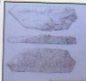 Sketch of the find