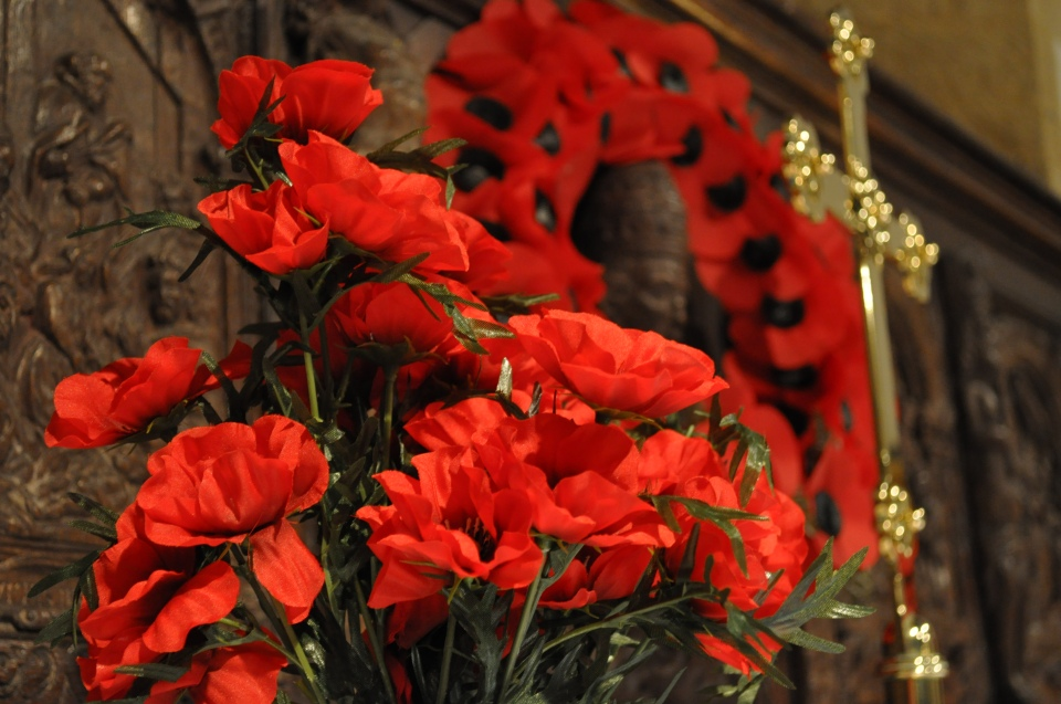 winter sale and poppies nove 10 096